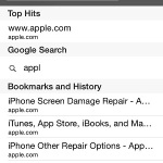 safari private mode search history