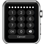 apple watch 10 digit passcode