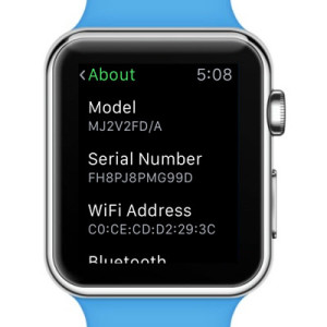apple watch 12-digit serial number