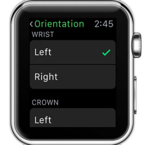 apple watch left wrist orientation setup