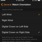 apple watch orientation settings