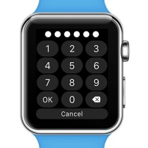 apple watch passcode input screen