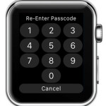apple watch re-enter password screen