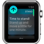 apple watch time to stand alert