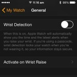 apple watch wrist detection setting