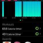 apple watch workout info in iphone activity app