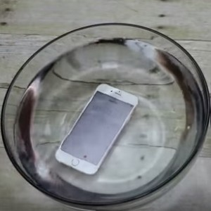 iphone 6S submerged in a water bowl
