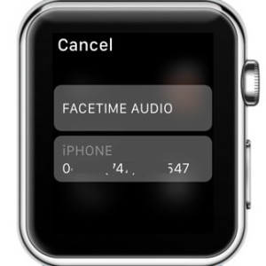 watchos 2 facetime audio call option