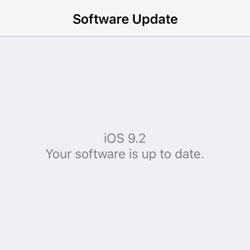 ios 9.2 beta 1 installed