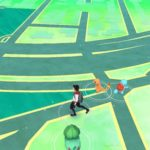 hunting the first pokemon