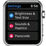 watchos 3 sounds & haptics settings
