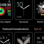 face gallery tab in apple watch app