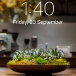 7 Wide Gamut Wallpapers For The iPhone 7 And iPhone 7 Plus