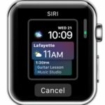 Siri Watch Face Makes Your Apple Watch More Proactive Than Ever