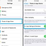 how to disable app store app ratings requests