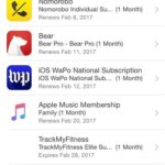 active app store subscriptions