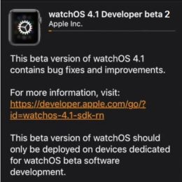 watchos 4.1 developer beta 2