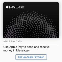 iOS 11 Apple Pay Cash set up screen.