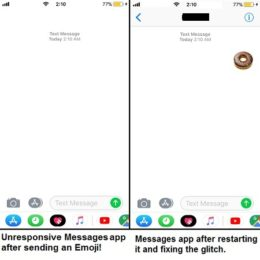 iOS 11 Messages app crashed by emoji bug.